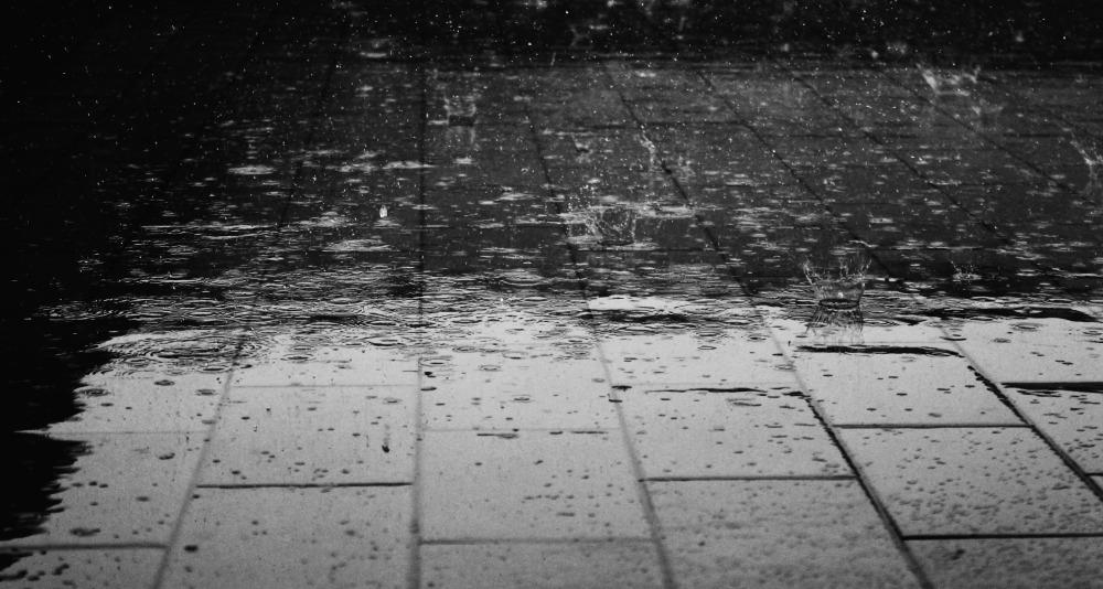 rain_villa-lynx